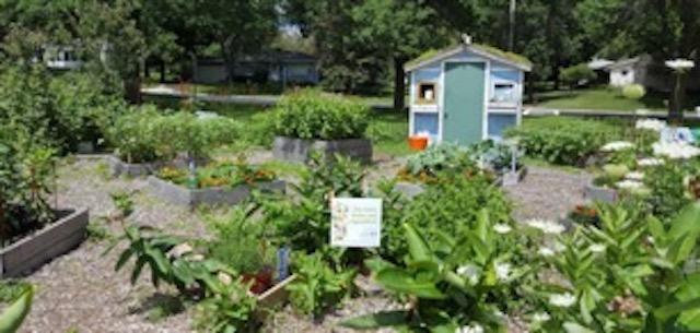 High Quality Statewide School Garden Organization Provides Resources, Connects Madison  Schools